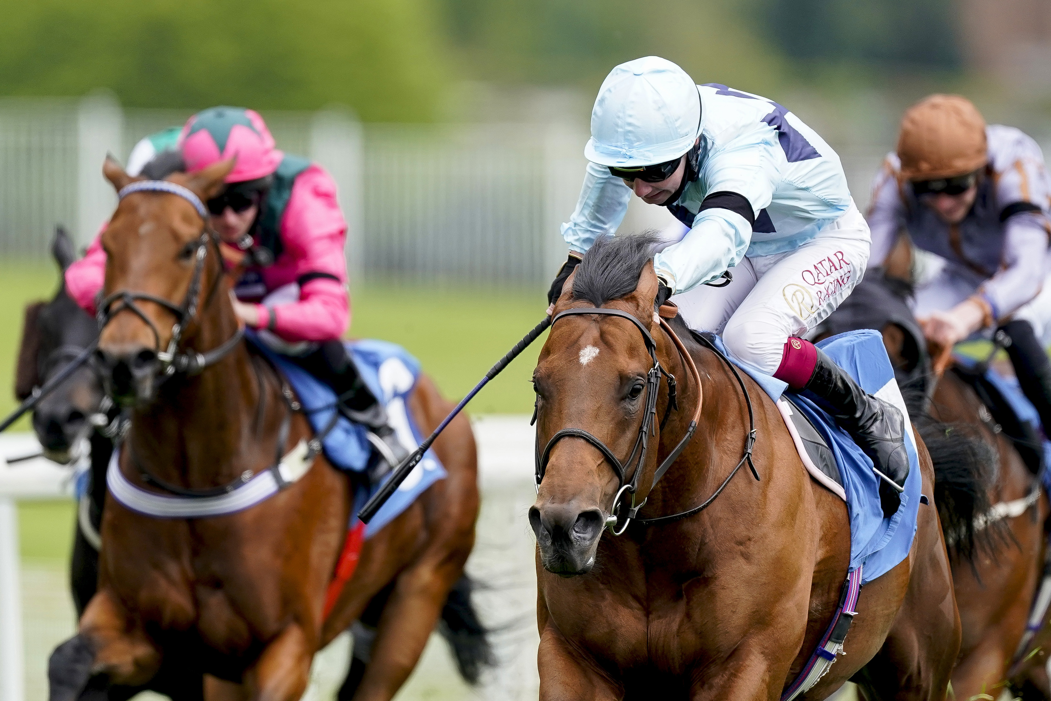 Starman is the favourite for next week's Diamond Jubilee at Royal Ascot